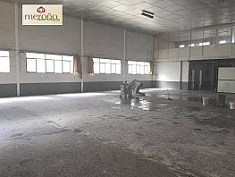 Foto - Nave industrial en alquiler en calle Algoros, Elche/Elx - 340830055