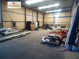Foto - Nave industrial en alquiler en calle Alzabares, Valverde en Elche/Elx - 395617746