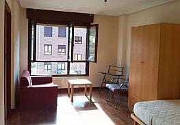 Salón - Estudio en alquiler en calle Fuente la Plata, La Argañosa en Oviedo - 313877444