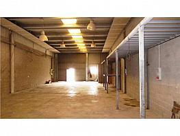 Nave industrial en alquiler en Sant Esteve Sesrovires - 315034448