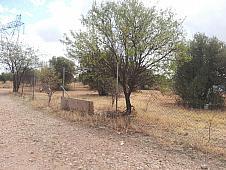 Parcelas Mejorada del Campo