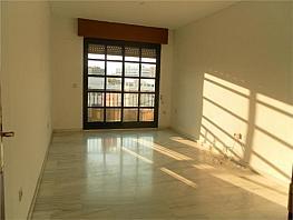Piso en alquiler en Centro en Córdoba - 359517162