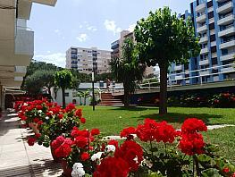Zonas comunes - Piso en venta en calle Mediterrani, Els Pins en Blanes - 293133579