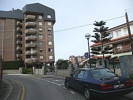P1000608.jpg - Piso en alquiler en calle Manuel Prieto Lavín, El Sardinero en Santander - 312060267