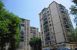 Pis en venda calle Pintor Ramos Rosas, Alegría de la Huerta-Jardín de Málaga a Málaga - 305975777