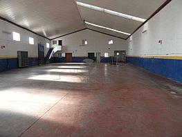 Sam_6051.jpg - Nave industrial en alquiler en Cuenca - 342587237