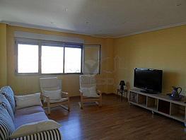 Sam_5663.jpg - Piso en alquiler en Cuenca - 336024306