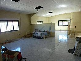 P1270361.jpg - Nave industrial en alquiler en calle Campsa, Cuenca - 373999426