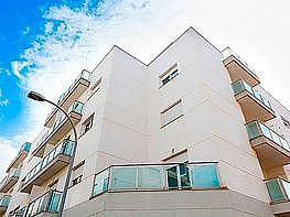 Local en alquiler en calle Zeus, Ejido (El) - 346951069
