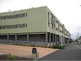 - Piso en alquiler en calle Trebolina, Vecindario - 256999178