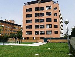 - Piso en alquiler en calle Euterpe, Canillejas en Madrid - 208168926