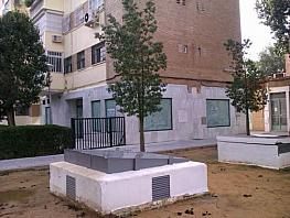 - Local en alquiler en calle Paz, Distrito Sur en Sevilla - 219558738