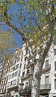 Imagen sin descripción - Oficina en alquiler en Eixample en Barcelona - 261898400