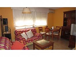 Flat for sale in Carolinas Bajas in Alicante/Alacant - 259650398