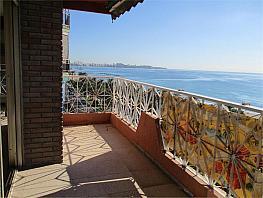 Piso en venta en Centro en Alicante/Alacant - 259647515