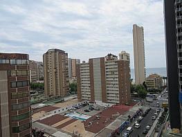 Foto - Estudio en venta en calle Almería, Levante en Benidorm - 270089599