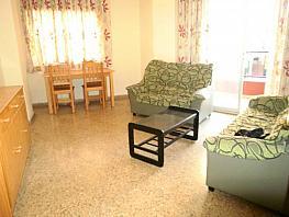 Foto - Piso en venta en calle Tomas Ortuñ'o, Zona centro en Benidorm - 293400109