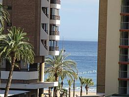 Foto - Apartamento en venta en calle Murcia, Levante en Benidorm - 304668130