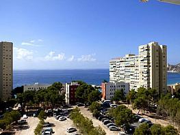 Foto - Apartamento en venta en calle República Argentina, Poniente en Benidorm - 315497206