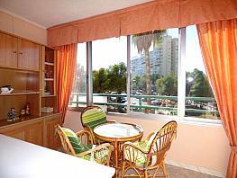 Foto - Apartamento en venta en calle Republica Argentina, Poniente en Benidorm - 387051201