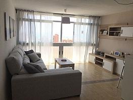 Foto - Apartamento en venta en calle Suecia, Benidorm - 388753861