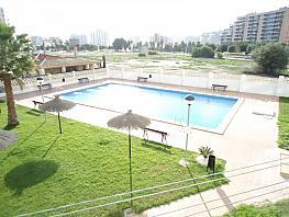 Foto - Piso en venta en Playa de San Juan en Alicante/Alacant - 356992405