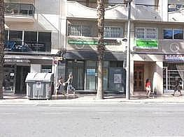 Foto - Local comercial en alquiler en San Vicente del Raspeig/Sant Vicent del Raspeig - 184688485