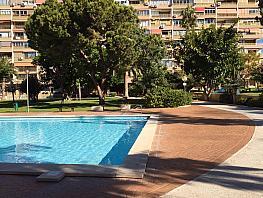 Piscina - Piso en alquiler en calle Tridente, Playa de San Juan - 325864749
