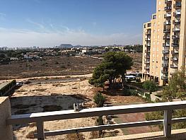 Vistas - Piso en alquiler en calle Ginjoler, Playa Mucha Vista en Campello (el) - 334778828