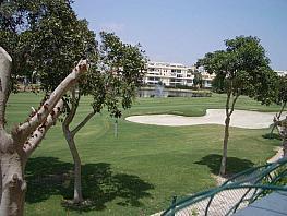 Jardín - Piso en alquiler en calle Escultor Jose Gutierrez, Playa de San Juan - 339109911