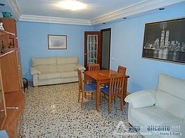 No disponible - Piso en alquiler opción compra en Alicante/Alacant - 163296927