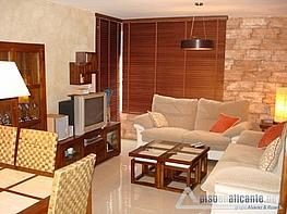 No disponible - Piso en alquiler opción compra en Alicante/Alacant - 163817937
