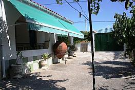 Imagen sin descripción - Finca rústica en venta en Puntalon en Motril - 295629060