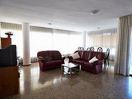 Otros - Piso en alquiler en Playa de San Juan en Alicante/Alacant - 298482961