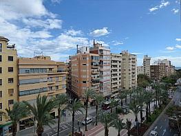 Otros - Piso en alquiler en Centro en Alicante/Alacant - 306358233