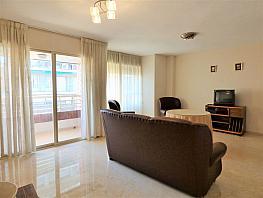 Otros - Piso en alquiler en Centro en Alicante/Alacant - 395272228