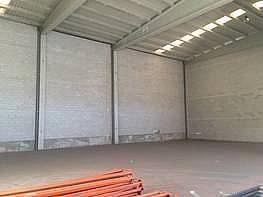 Foto - Nave industrial en alquiler en calle Dracma, Disperso Partidas en Alicante/Alacant - 245548163
