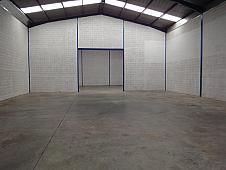 Detalles - Nave industrial en alquiler en Camas - 166768989