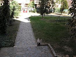 Jardín - Piso en alquiler en calle Jose Isbert, Cubas-Industria en Albacete - 260596121