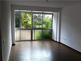 Salón - Piso en alquiler en plaza De la Libertad, San Pedro en Alcantarilla - 322040893