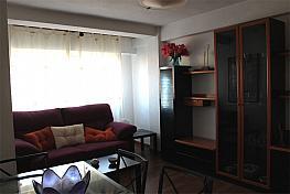 Piso en alquiler en calle Alameda de San Antón, Ensanche en Cartagena - 377005293