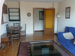 Salón - Piso en alquiler en calle San Lorenzo de El Escorial, El Romeral en San Lorenzo de El Escorial - 357235667