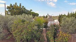 Fachada - Casa rural en venta en calle Menorca, Ampolla, l´ - 333119253