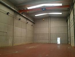 Nave industrial en alquiler en calle Serra de la Salut, Barbera del Vallès - 256714736