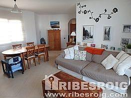Imagen sin descripción - Piso en venta en Les Parellades en Sant Pere de Ribes - 221064149