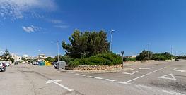 Foto - Terreno en venta en calle Sa Torre, Maioris Decima en Llucmajor - 295847805