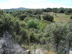 Grundstück in verkauf in calle Camino de la Cerca del Cura, Colmenar Viejo - 22634078