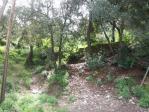 Terrenos Barcelona, Sarrià - sant gervasi