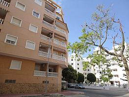 flat for sale in calle ingeniero joaquín muñoz, guardamar pueblo in guardamar del segura