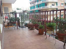 Piso en venta en Badalona - 182444125